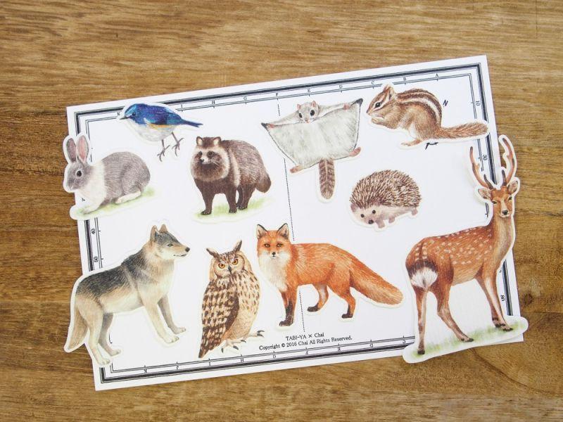 画像1: 【ネコポスOK】 Pictorial sticker/ピクトリアルステッカー 森の動物