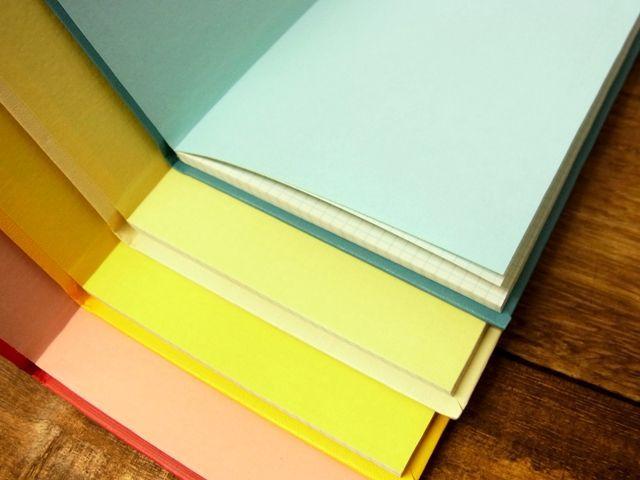 画像3: 【ネコポスOK】 コクヨ リミテッドカラー測量野帳 SKETCH BOOK レッド