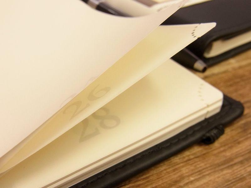 画像3: 【ネコポスOK】 イギリス PLUSFILE/プラスファイル  ニュートン ノートブック