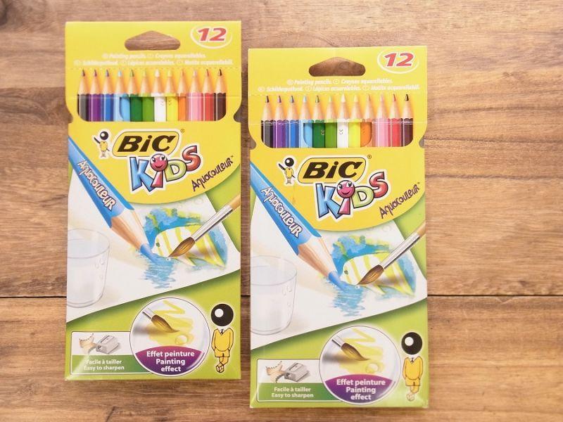画像1: 【買付け品】【ネコポスOK】 フランス BIC/ビック 水彩色鉛筆 12色セット