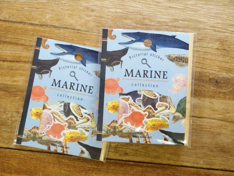 画像2: 【ネコポスOK】 Pictorial sticker/ピクトリアルステッカー 海洋生物