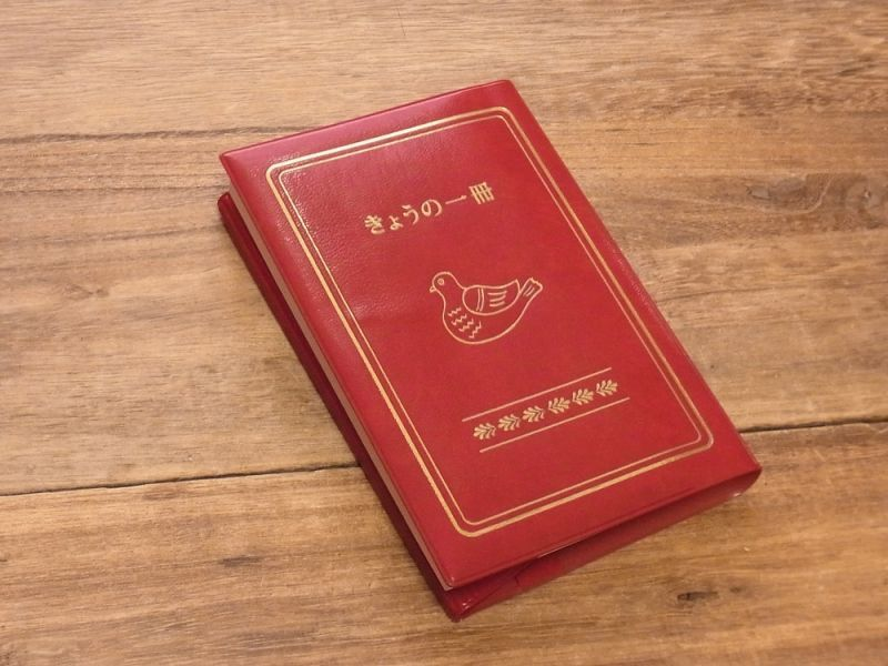 画像2: 【ネコポスOK】 きょうの一冊 ブックカバー レッド