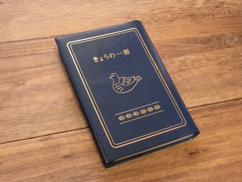 画像2: 【ネコポスOK】 きょうの一冊 ブックカバー ブルー