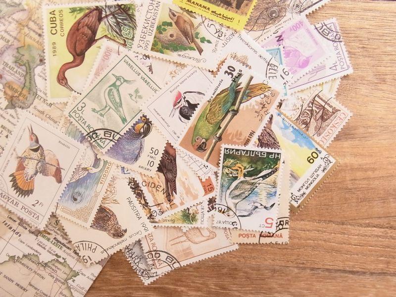 画像1: 【ネコポスOK】 外国使用済切手 世界の鳥 50枚入り