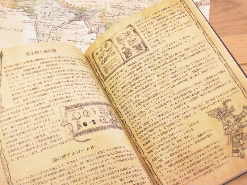 画像4: 【ネコポスOK】 生みたて卵屋 薬用原料採集旅行の記録 2018 手帳