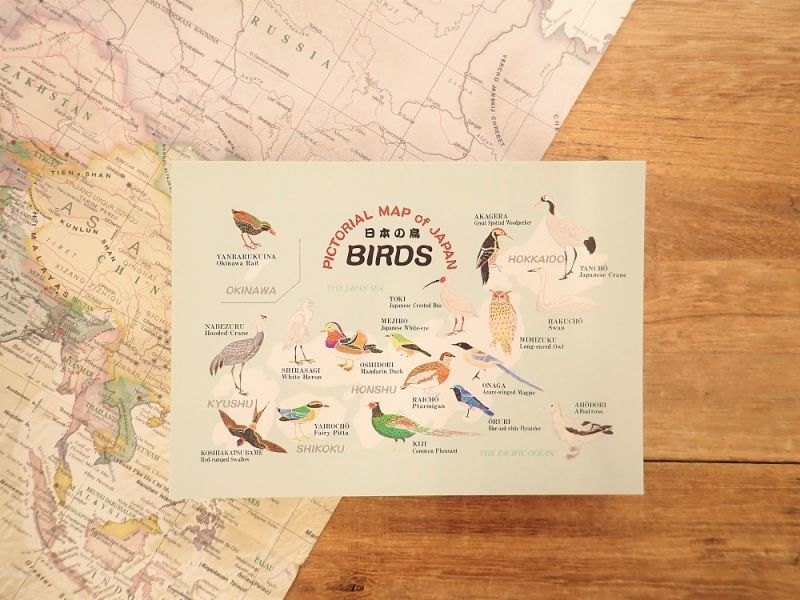 画像1: 【ネコポスOK】 PICTORIAL MAP of  JAPAN 日本の鳥 ポストカード