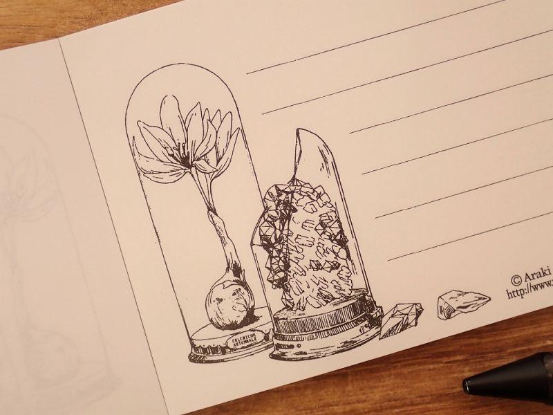 画像2: 【ネコポスOK】 生みたて卵屋 一筆箋 薬用植物/鉱石採集