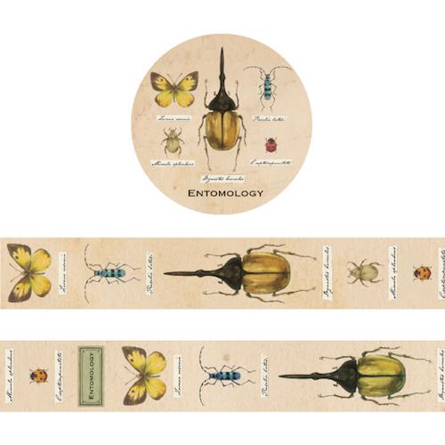 画像2: 【ネコポスOK】 STUDY HOLIC マスキングテープ 昆虫学