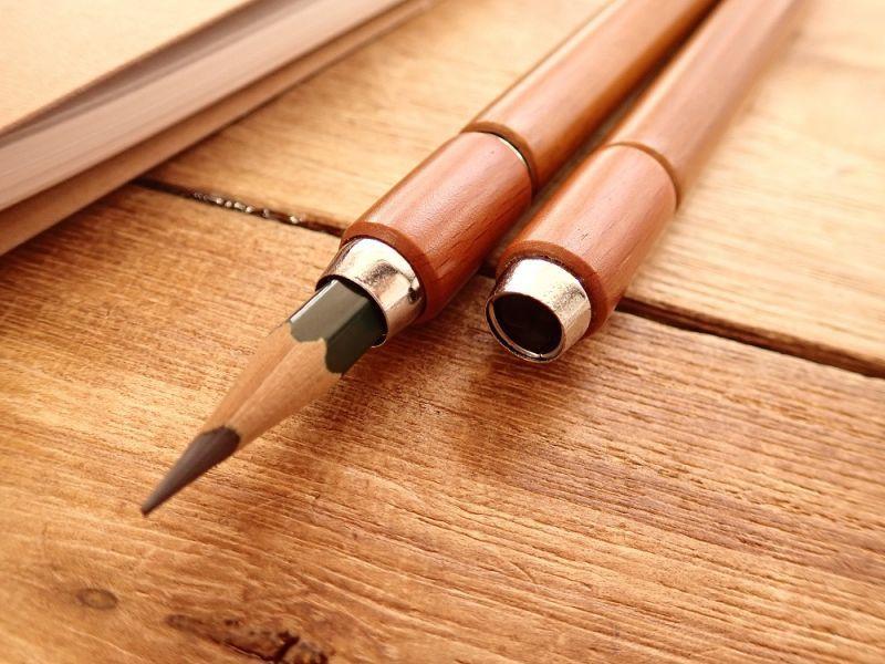 画像2: 【ネコポスOK】 木製補助軸 ツイン