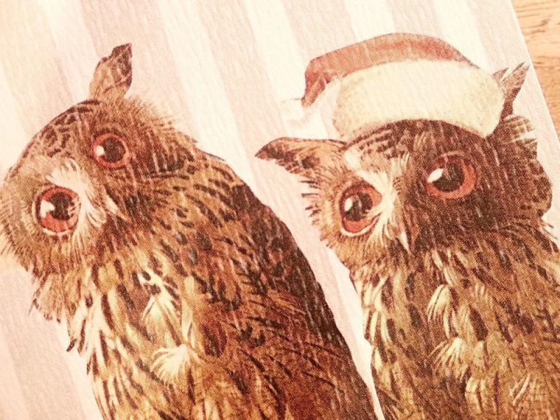 画像2: 【ネコポスOK】   ドイツ Hannelore/ハンネローレ グリーティングカード(4つ折り) Christmas  Owl