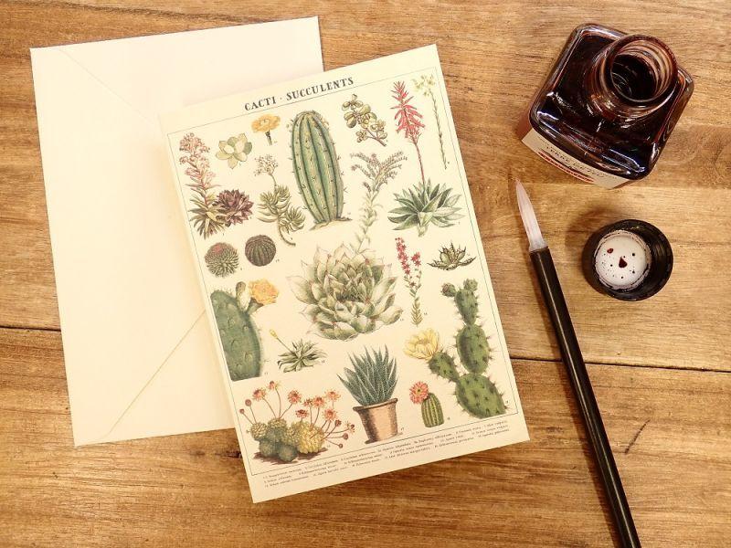 画像1: 【ネコポスOK】 アメリカ CAVALLINI/カバリーニ グリーティングカード(2つ折り) Cacti & Succulents