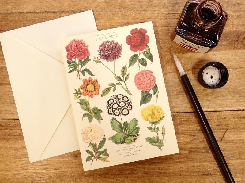 画像1: 【ネコポスOK】 アメリカ CAVALLINI/カバリーニ グリーティングカード(2つ折り) Botanica