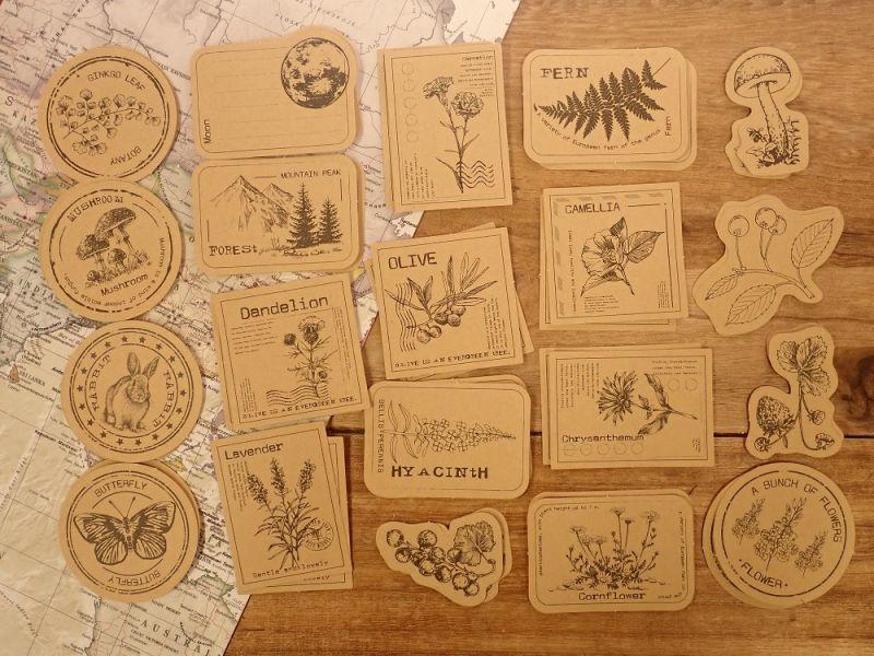 画像1: 【ネコポスOK】 クラフトシール  レトロ 植物