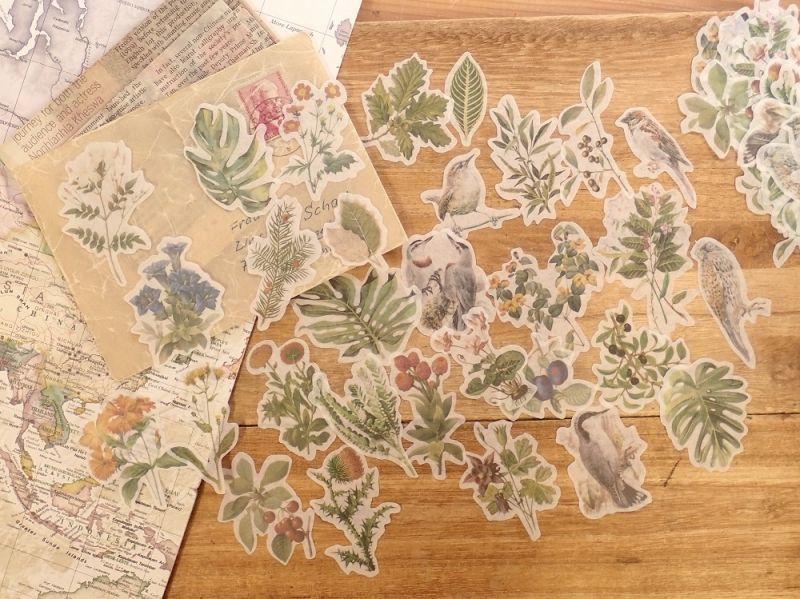画像2: 【ネコポスOK】 和紙ステッカー 30柄入り 植物と鳥