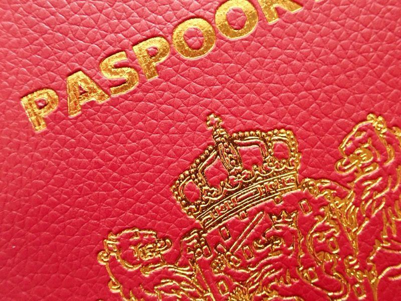 画像2: 【ネコポスOK】 パスポートカバー オランダ レッド