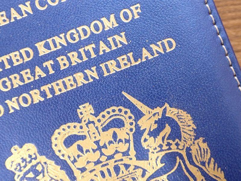 画像2: 【ネコポスOK】 パスポートカバー IRELAND ブルー