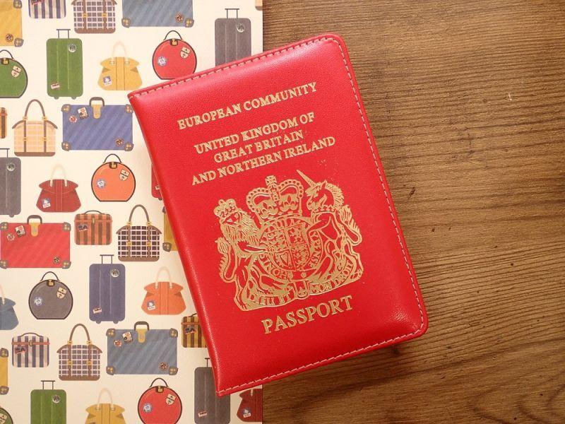 画像1: 【ネコポスOK】 パスポートカバー IRELAND レッド